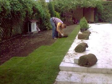 ukdanie-trawy-rolki